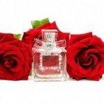 Hechizos de amor con el poder de las flores